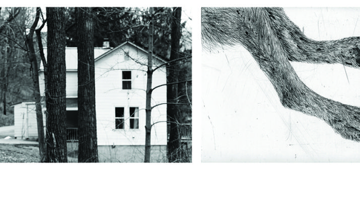 "L) Seton Smith, Two Trees Before House Leeds series 2012, 36"" x 54"" ink jet print on Hahnemuhle paper (R) Kiki Smith, Jewel, 2004 One of set of 3 etchings 14"" x 17"" Edition of 24"